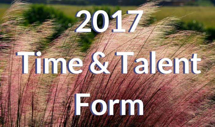 2017 Time & Talent Form